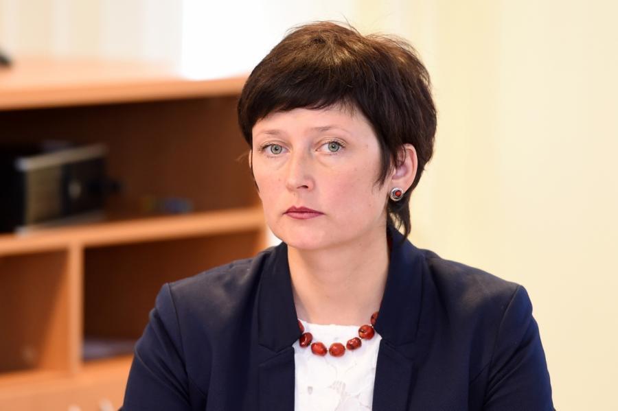 Доктор политических наук Иева Берзиня.