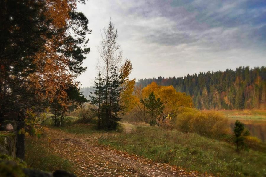 Осень вЛатгалии. Фото: Лера Марцинкевич