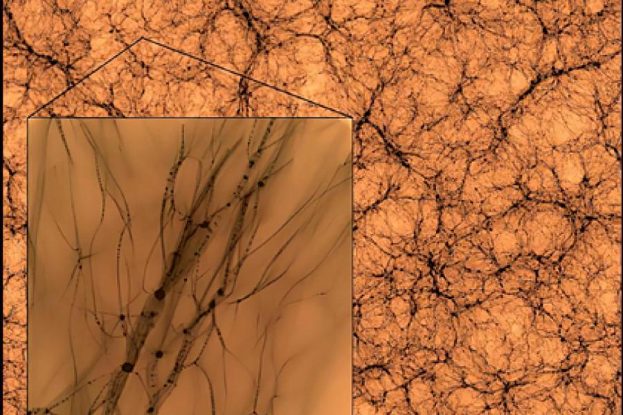 Изображение: J. Wang, S. Bose / Center for Astrophysics