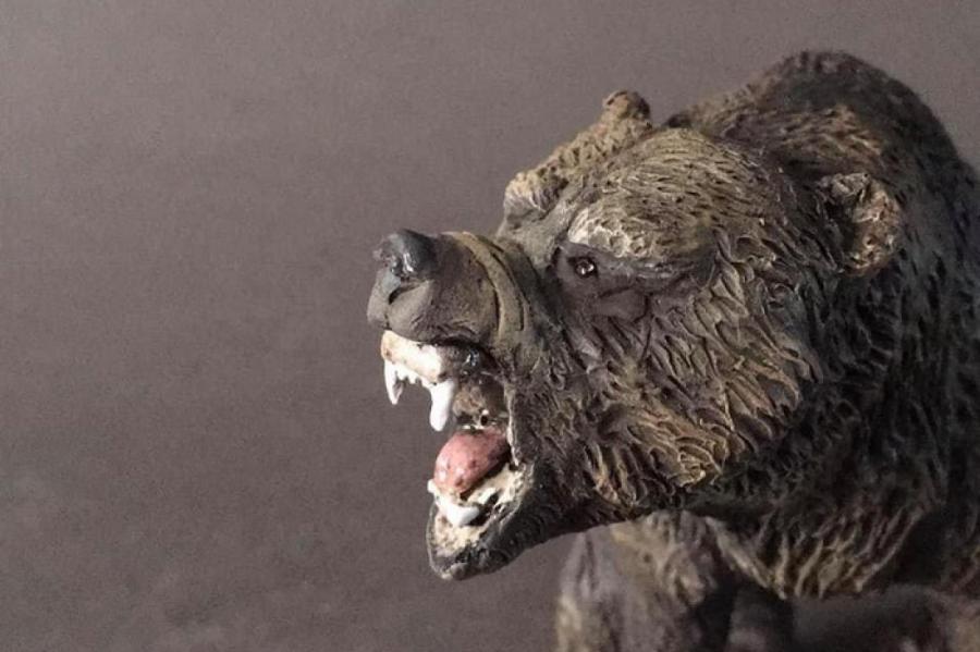 Реконструкция внешнего вида пещерного медведя.