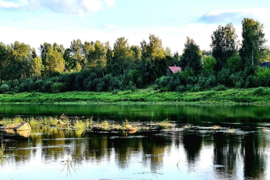 Лето у реки Даугава в Латгалии, иллюстративное фото