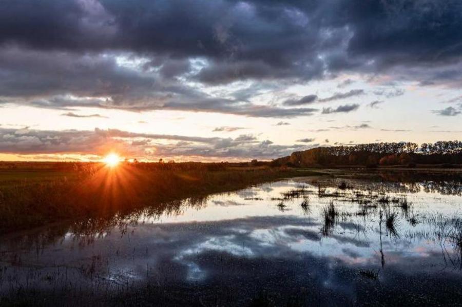 Фото: Fotostand / Voelker/www.globallookpress.com
