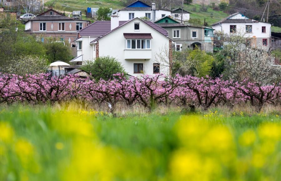 Цены, террористы, украинцы: ачто сегодня происходит вКрыму?