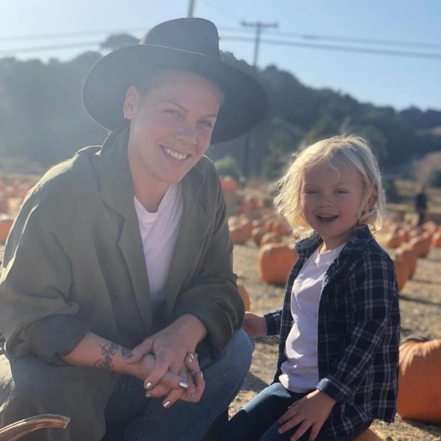 У певицы и ее сына болезнь протекала волнообразно instagram.com/pink