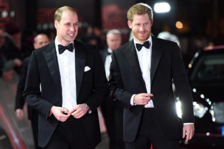 Принцы Уильям и Гарри   Источник фото: Getty Images
