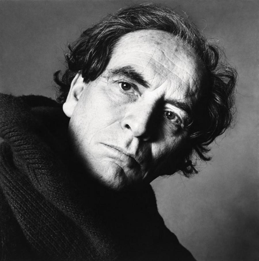 Пьер Карден, 1982  Irving Penn